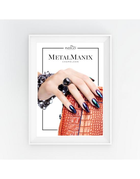 Poster - MetalManix Chameleon